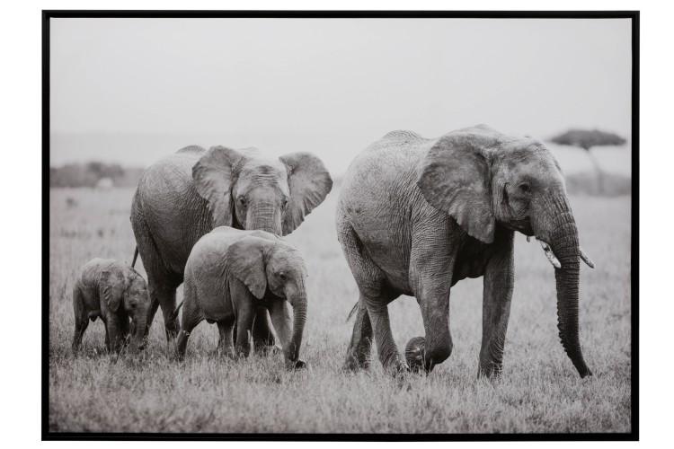 cadre éléphant, peinture murale éléphant